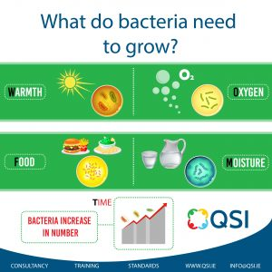 What do bacteria need to grow?